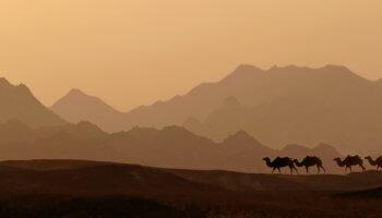 Пустыня — возможно, самое красивое, что создала природа